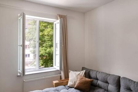 Mosquitera para ventanas