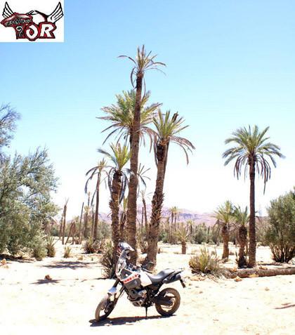 Primera Videoprueba de la Yamaha XT660Z Ténéré 2008