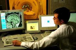Identificada la zona del cerebro en la que se encuentra el altruismo