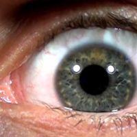 Así de viscoso se ve nuestro ojo cuando se graba a cámara lenta