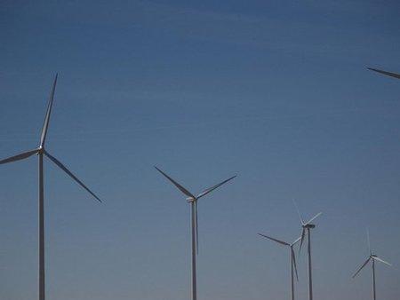 Las tecnologías verdes para empresas