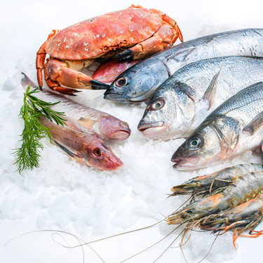 Los mejores pescados y mariscos para congelar (y cómo hacerlo)