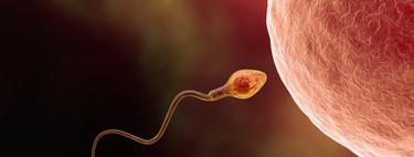 Todos los métodos anticonceptivos ordenados según su eficacia