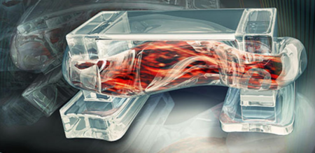 La Universidad de Illinois investiga cómo utilizar músculos para que los robots se muevan