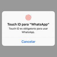WhatsApp ya permite proteger conversaciones con la huella o Face ID en iOS, así se hace