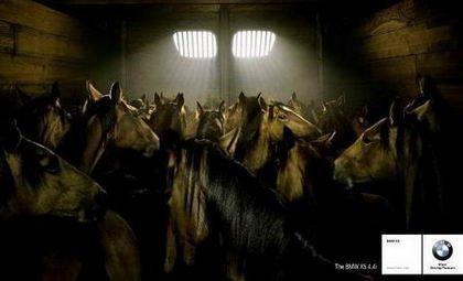La parrilla y los caballos de BMW