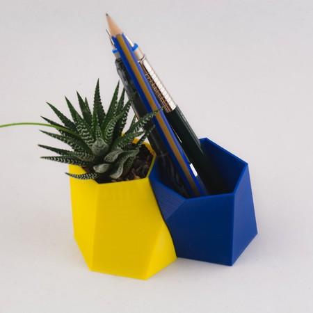 La decoración también se rinde al encanto del escutoide, la nueva forma natural y geométrica