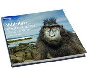 wildlife 09