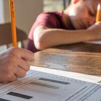 Hacer los deberes mejoraba la nota final del 86% de los alumnos. Hasta que llegó Google