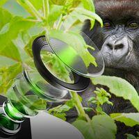 Gorilla Glass DX/DX+: el nuevo cristal resistente para proteger las cámaras de los smartphones también ayudará a tomar mejores fotos