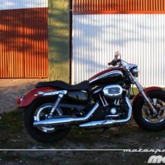 Foto 2 de 65 de la galería harley-davidson-xr-1200ca-custom-limited en Motorpasion Moto