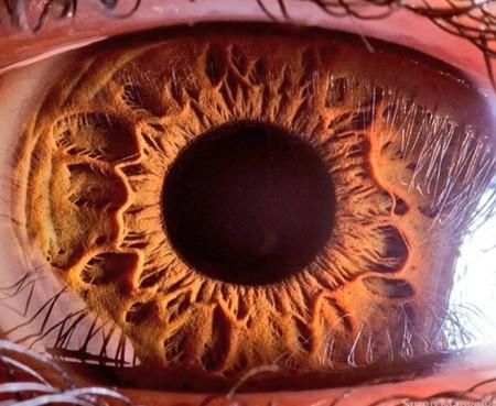 Samsung quiere construir sensores de 600 megapíxeles que desafíen el límite teórico del ojo humano