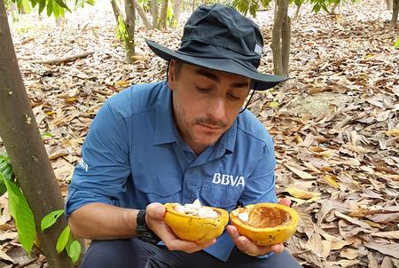 """El repostero Jordi Roca busca en la selva """"el mejor cacao del mundo"""" para su futura chocolatería"""
