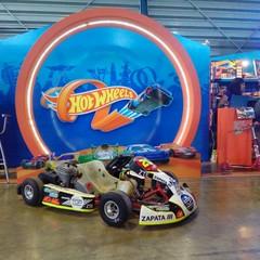 Foto 30 de 48 de la galería 10o-salon-hot-wheels en Usedpickuptrucksforsale