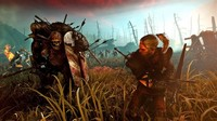 Salen nuevas pruebas en Steam de un The Witcher 2 para Linux