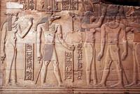Abre en Egipto el Museo del Cocodrilo