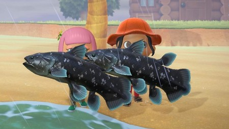 Animal Crossing: New Horizons: cómo pescar al Celacanto