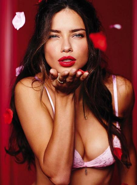 adriana-lima-victorias-secret-january-2014-4.jpg