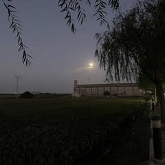 Foto 26 de 77 de la galería iphone-xs-fotografias en Xataka