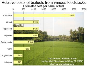 Las bioenergías y sus materias primas