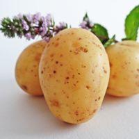 Cuando el cerebro confunde patatas con manzanas