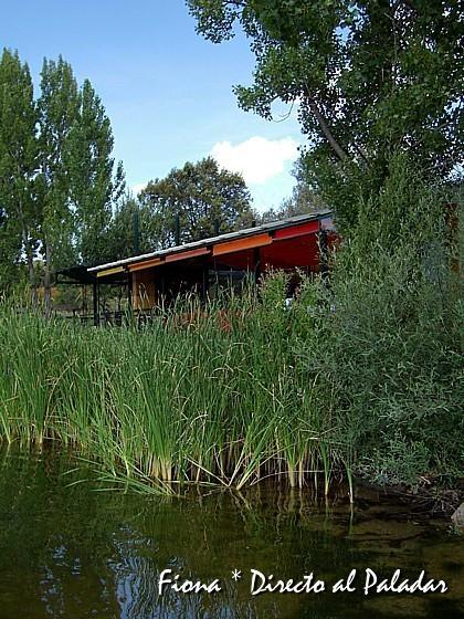 En la orilla del Náutico, un oasis en Madrid