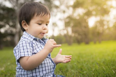 ¿Cómo descubrir si tu hijo tiene alergias?