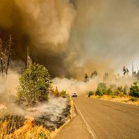 Tim Cook anuncia que Apple hará una donación a la ayuda contra los incendios forestales de California