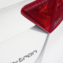 Foto 39 de 49 de la galería audi-a7-sportback-h-tron-quattro en Motorpasión
