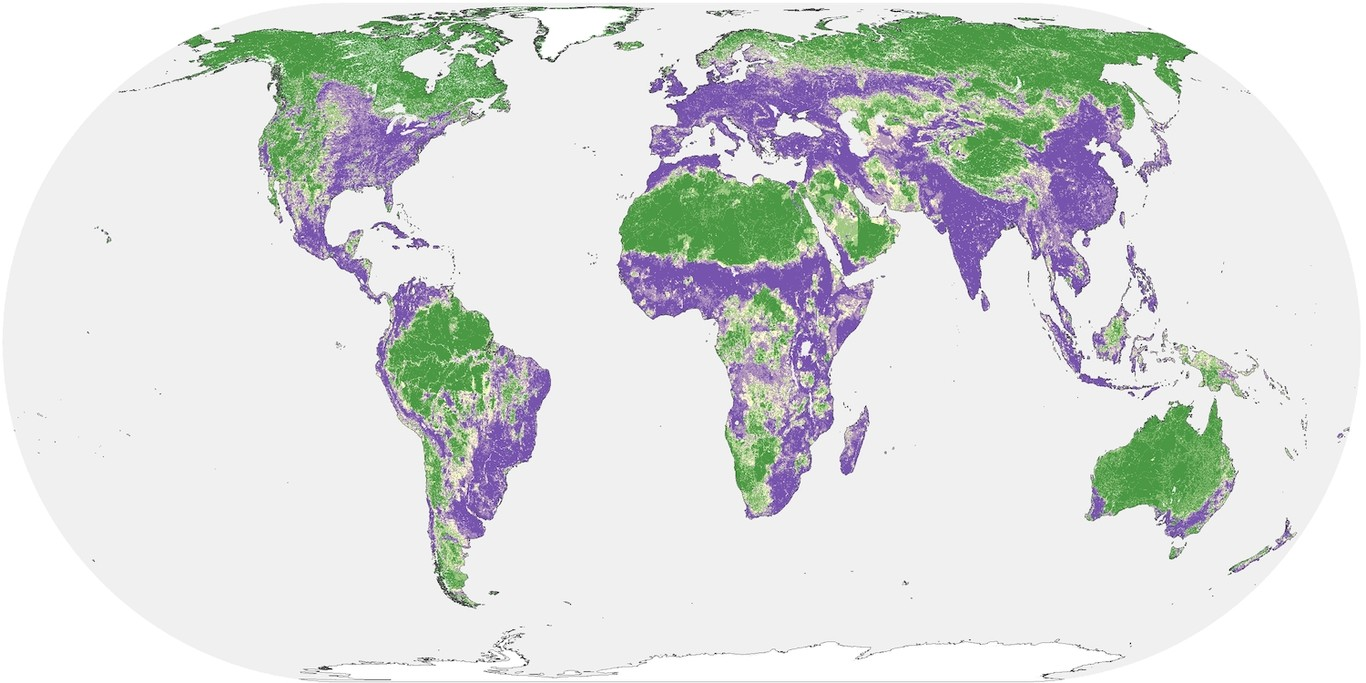Global Human Influence Copy