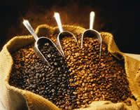 Para comprobar la calidad del café