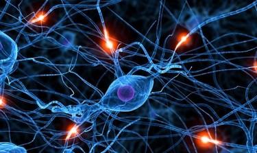 ¿Aceptarías hacer más inteligentes a tus hijos por manipulación genética?