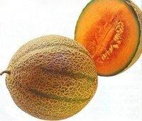 Conservas de melón