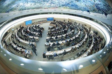 La ONU reconoce la libertad digital como un derecho humano que debe ser protegido