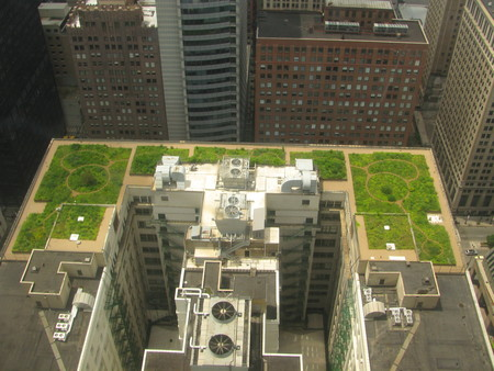 20080708 Chicago City Hall Green Roof