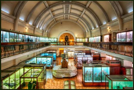Museo Horniman de Londres, un museo tradicional ideal para visitar con niños