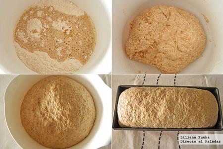 Pan de molde integral. Pasos