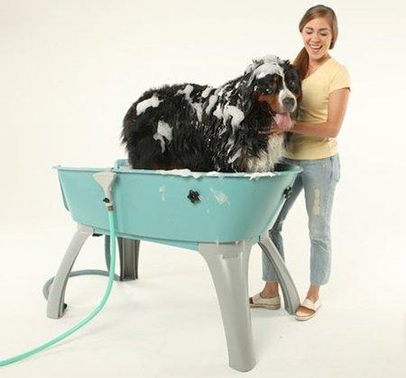 La bañera perfecta para tu mascota
