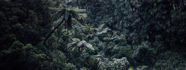 Entre El Dorado y la locura: Así es la tecnología que nos permite descubrir los secretos que se ocultan en la selva