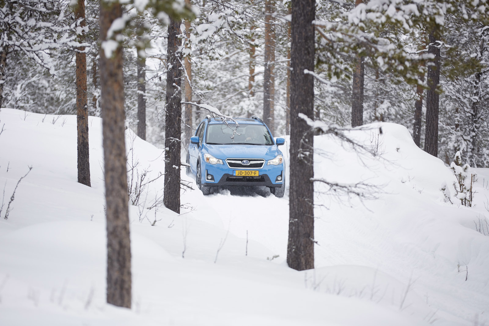 Foto de Subaru Snow Drive 2016 (118/137)