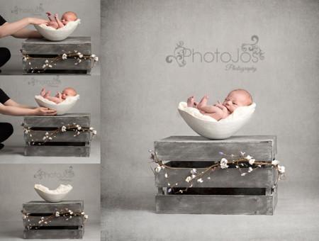 Bump Bowl PhotoJos