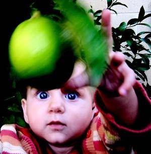 La foto de tu bebé: ¡ese limón es para mí!