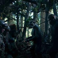 'La guerra del planeta de los simios', épico nuevo tráiler de la tercera entrega de la saga
