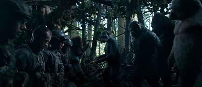 Guerra del Planeta de los Simios