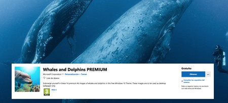 Whales And Dolphins Premium