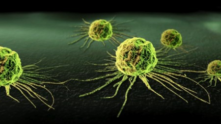 Cancer Cell1