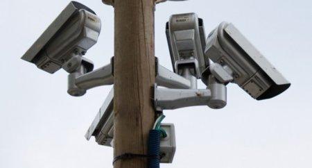 Espían nuestros archivos torrents mediante falsos usuarios