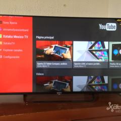 Foto 5 de 27 de la galería interfaz-android-tv en Xataka México