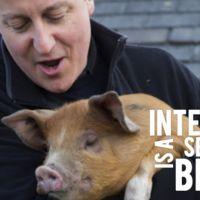Pig Gate, programación contra la exclusión y la lista de discos definitiva. Internet is a series of blogs (329)