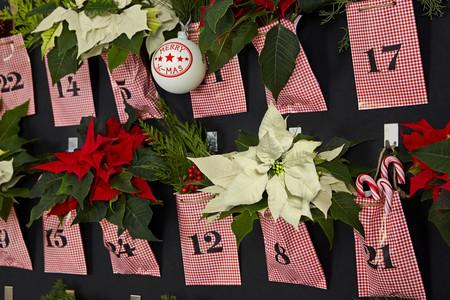 2015 Poinsettia Sala De Estar Clasica 03 Es